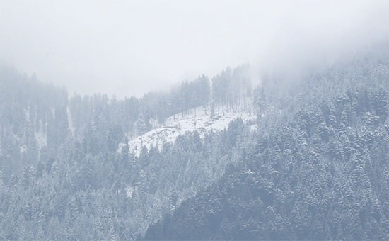 Overnight rainfall and heavy snowfall in upper reaches, Doda District