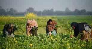 किसानों और मज़दूरों को मिलेगा पेट भर खाना सिर्फ 10 रुपए में ।