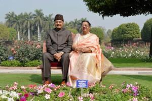 Haryana Sarasvati Heritage Development Board, Vice-Chairman