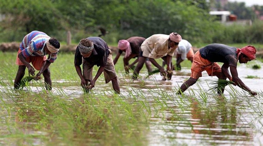 Haryana Agriculture and Farmers' Welfare Minister, Sh. JP Dalal said that it is very important for farmers to be educated.