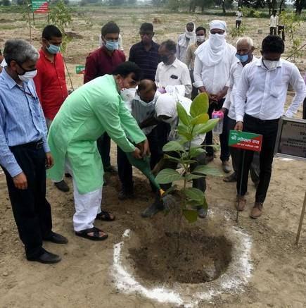 Mega plantation drive to be organized in July Governor