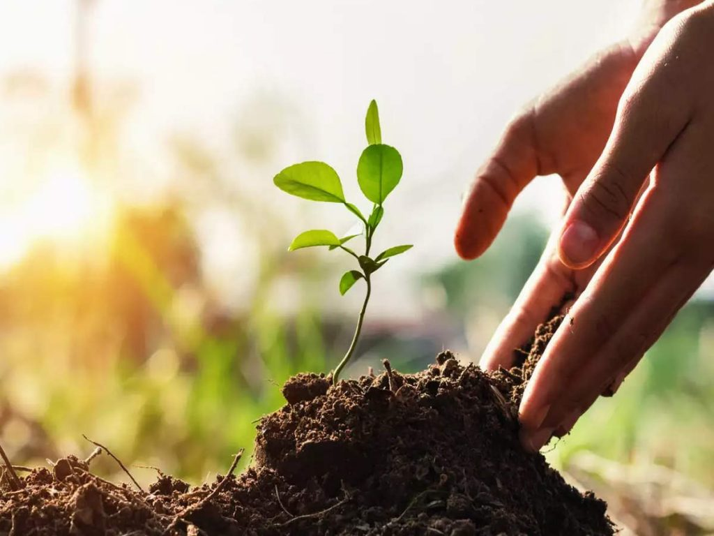 One crore saplings to be planted during State Level Van Mahotsav