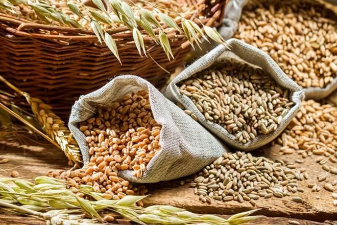 Fourth Advance Estimate of principal crops released